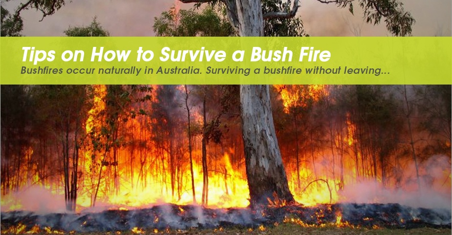 hs-TTi-blog-Tips-on-How-to-Survive-a-Bush-Fire