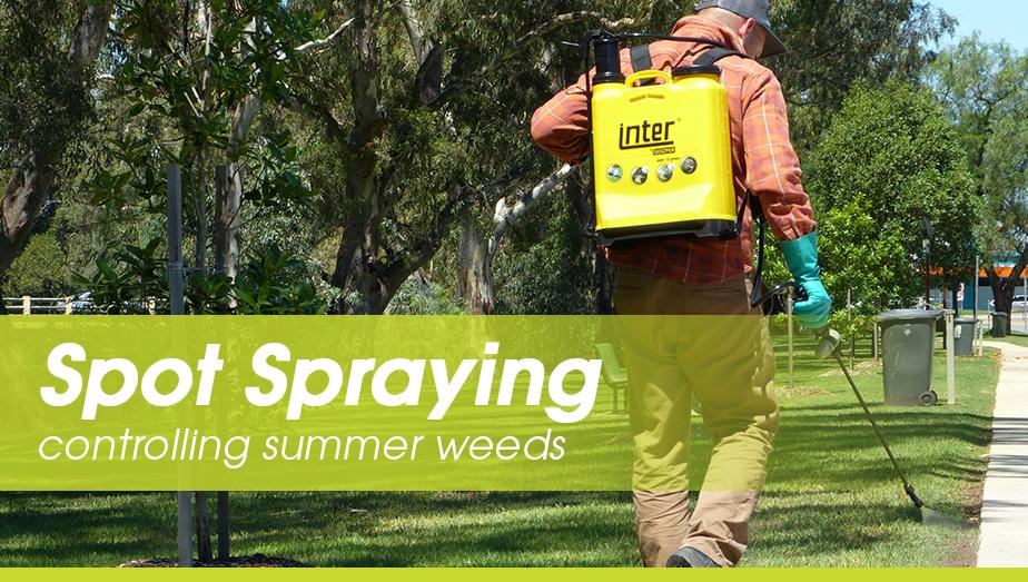 tti-blog-controlling-summer-weeds.jpg